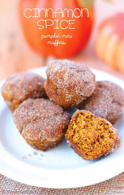 Pumpkin Spice Recipes: Cinnamon Spice Pumpkin Mini Muffins