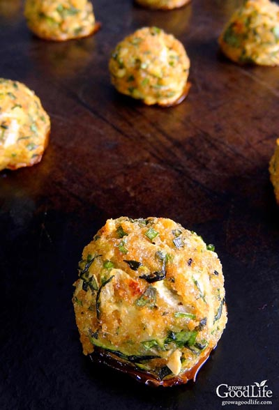Party Snack Ideas & Party Appetizers: Zucchini Garlic Bites